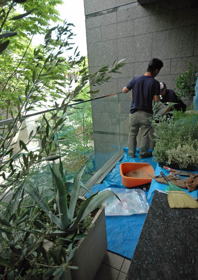 130717daikanyama_balcony_shokusai-3